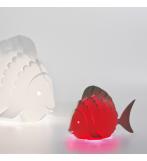 Minizoolight fisk
