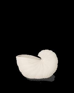 Konkylie Vase